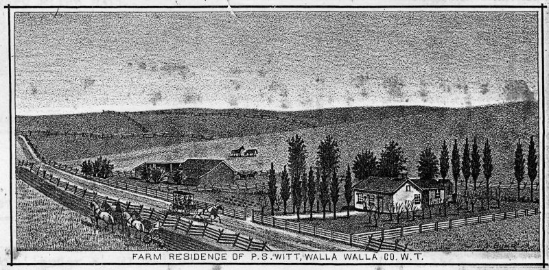 Farm of Philander and Mary Witt, thought to be on Pleasant Street west of School Avenue.