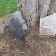 Several of the grave markers leaning against a tree. Photo courtesy of Joe Drazan